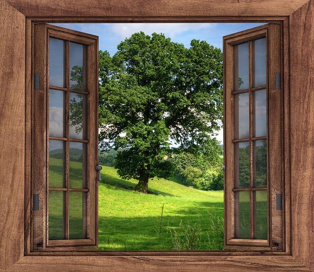 Om kittet har börjat lossna eller träet har spruckit är det dags att renovera dina fönster.